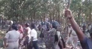 Dhenkanal-villagers-protest-tree-felling-660x330
