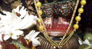 Radha-Pada-Darshan-at-Sakhigopal-on-Anla-Nabami