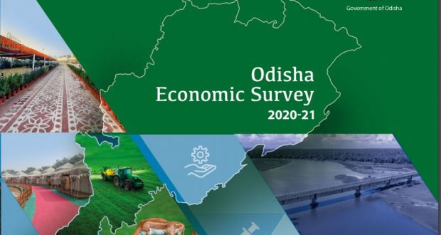 State-economic-survey-report